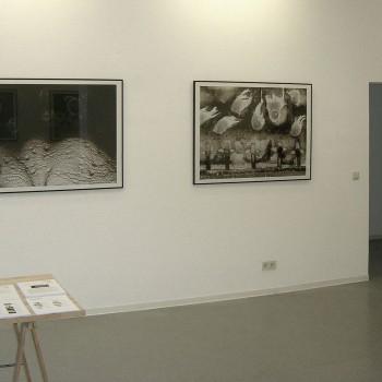 Thomas Michel, Darwinland, Hommage an Charles Darwin zum 200. Geburtstag, Galerie Frenhofer Berlin