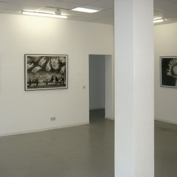 Thomas Michel, exhibition Darwinland, Galerie Frenhofer Berlin
