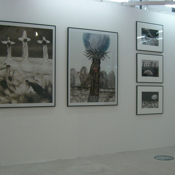 Art fair Berliner Liste 2009, booth of Galerie Frenhofer Berlin