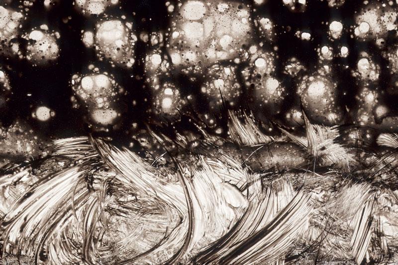 Thomas Michel, Die Odyssee, Die Rache Poseidons
