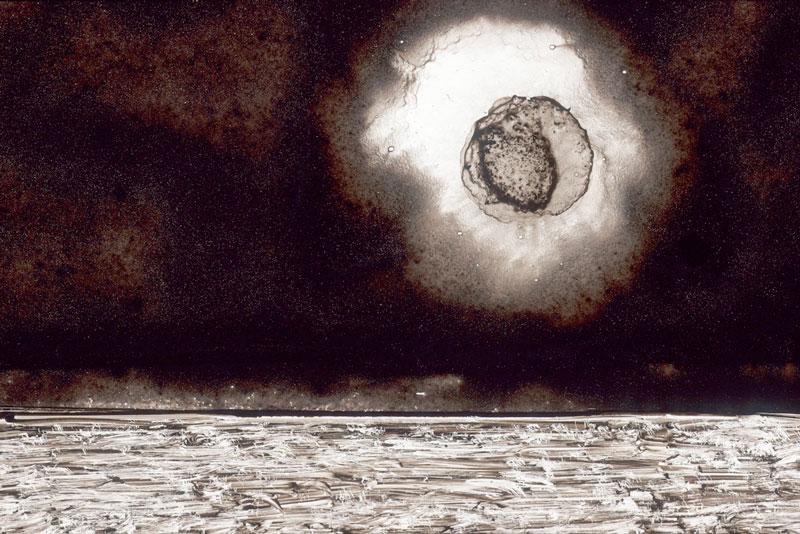 Thomas Michel, The Odyssey, The Wrath of Zeus